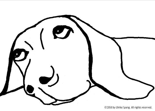 Ulrike Spang illustration zeichnung hund wundern