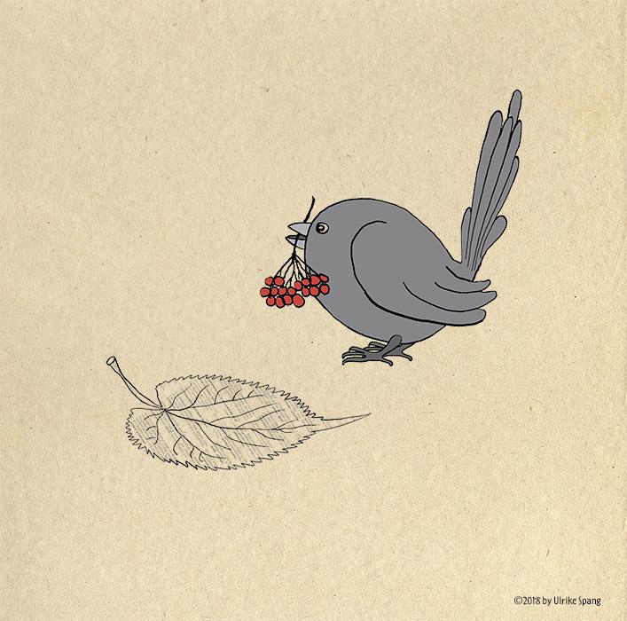 vogel,bilderbuch,ulrike spang,illustration,ulli verlag,